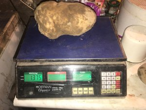 Ziemniak 1,375 KG - Denar