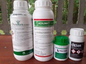 Herbicydy na pszenice