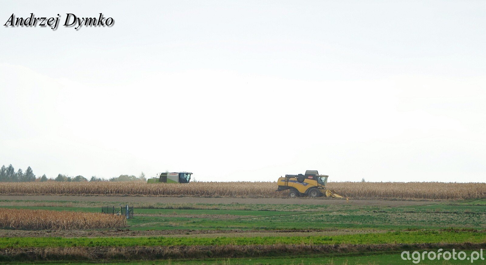 New Holland & Claas