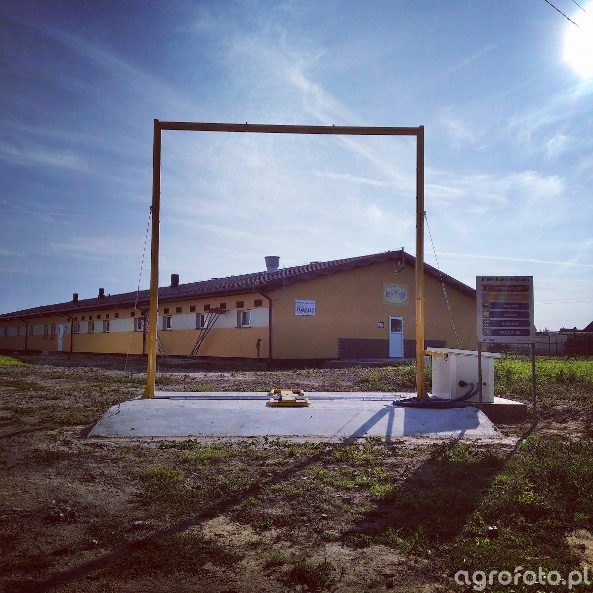 Nowy budynek chlewni z bramą bioasekuracyjną