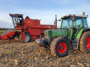 Fendt i Bizon na ściernisku po kukurydzy