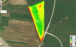 Pszenica siew klasyczny vs siew rzutowy - zdjęcia satelitarne