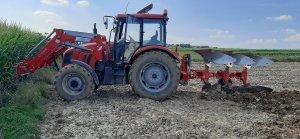 Farmer F-8244 C2 Unia Ibis 3