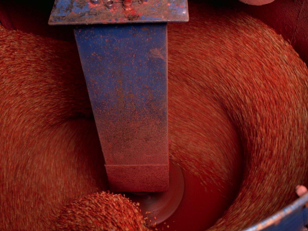 Co daje zaprawianie nasion?