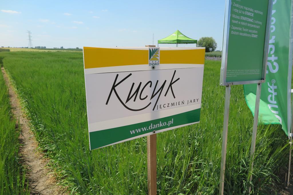 Jakie preparaty w uprawie jęczmienia jarego stosuje BASF?